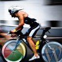گوگل در خدمت افزایش سرعت وردپرس