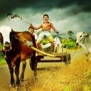تور تصویری اندونزی